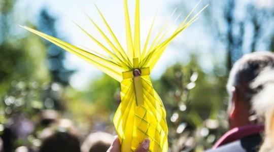 Niedziela Palmowa w Medziugorju