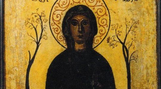 Patron dnia 10.06 - Oliwa z Palermo (wł. Oliva di Palermo), dziewica, męczennica