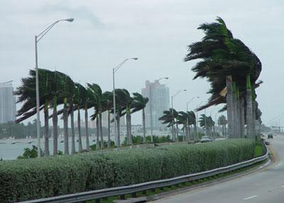 Modlitwa  grupy modlitewnej z prośbą o oddalenie niszczącego huraganu na Florydzie (09.09.2017)