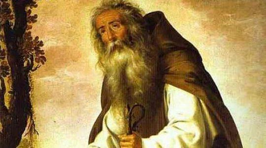 Święty Antoni, opat (17.01.2019)