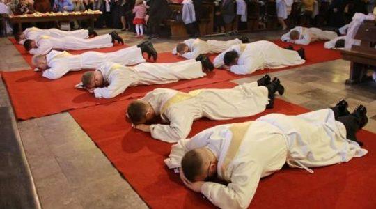 Nowy program przygotowania do kapłaństwa w Kościele w Polsce (Vatican Service News - 08.02.2019)