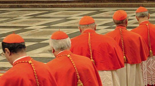 Obrady Rady Kardynałów w Watykanie(Vatican Service News - 08.04.2019)