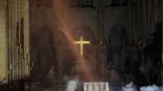 Papież Franciszek po dramacie katedry Notre Dame(Vatican Service News - 17.04.2019)