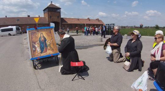 Transmisja z modlitwy koronka do Bożego Miłosierdzia-In diretta Coroncina della Divina Misericordia (25.05.2019)