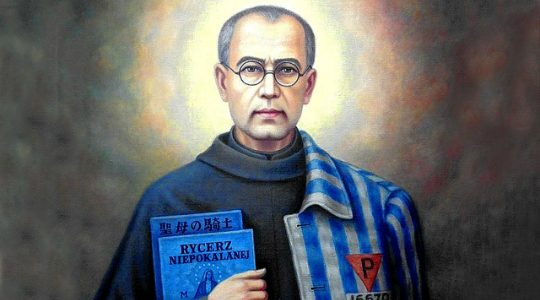 Święty Maksymilian Maria Kolbe, prezbiter i męczennik (14.08.2019)