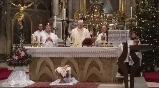 Ks. bp. Stolarik podczas Mszy św. zapowiedział kolędowanie z Polakami  (7.01.2020)