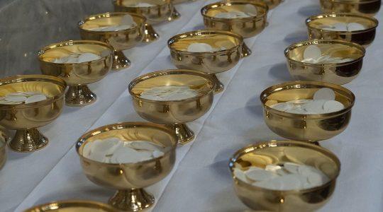 Czy interkomunia jest potrzebna katolikom i protestantom(Vatican Service News - 13.01.2020)