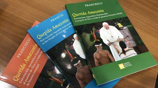Reakcje mediów światowych na Adhortację Apostolską w sprawie Amazonii(13.02.2020)