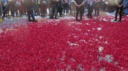 Rzym-Wiedeń: deszcz płatków róż w uroczystość Zesłania Ducha Świętego (31.05.2020)