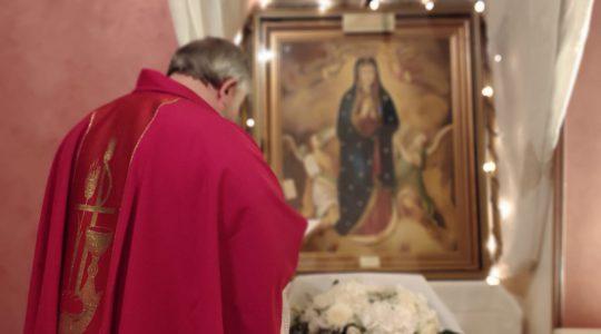 Uroczystość  Apostołów św. Piotra i Pawła-transmisja Mszy Świętej-29.06.2020