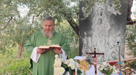 Transmisja Mszy Świętej-1.07.2020
