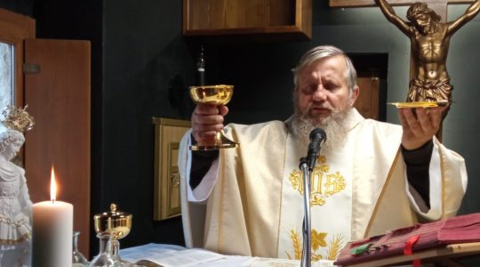 Transmisja Mszy Świętej z kaplicy św. Charbela-Uroczystość Wszystkich Świętych Florencja 1.11.2020