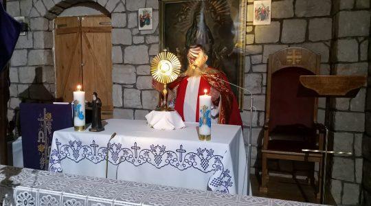 Modlitewne spotkania w dniu św. Charbela 23.03.2021