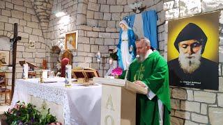 La Santa Messa in diretta alle ore 19.00-Florencja 10.06.2021
