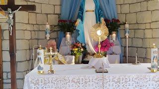 Adorazione Eucaristica e litania a Sacro Cuore di Gesù alle ore 18.30-Florencja 11.06.2021