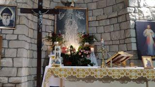 Transmisja Mszy Świętej, godz. 11.00-XXIV Niedziela Zwykła,Florencja 12.09.2021