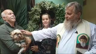 W dzień św. Franciszka – błogosławieństwo dla  zwierząt (04.10.2021)